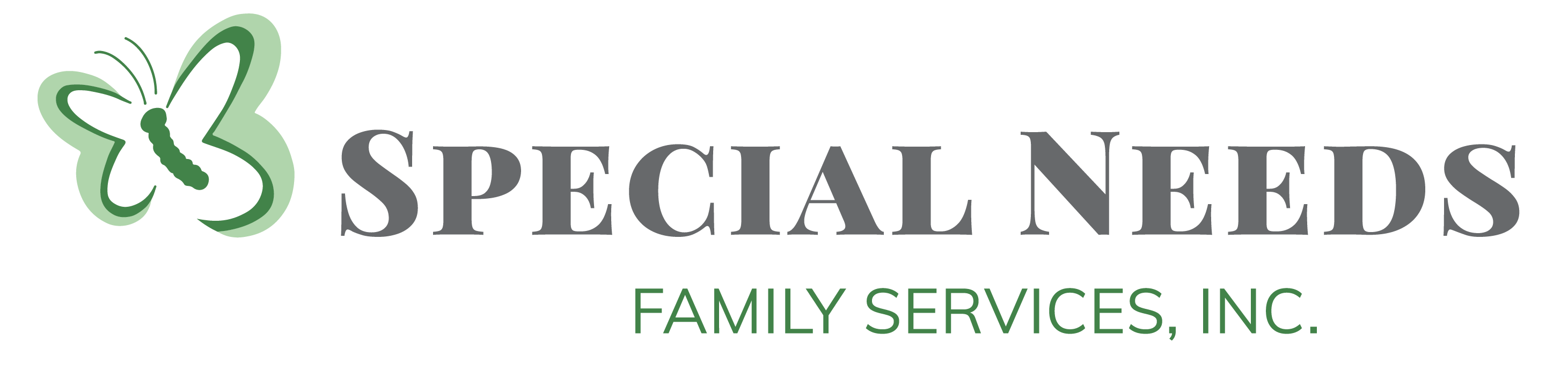 Special Needs Family Services